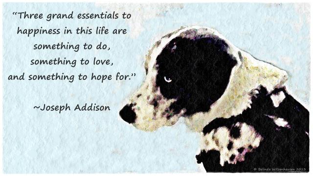 Addison Wallpaper