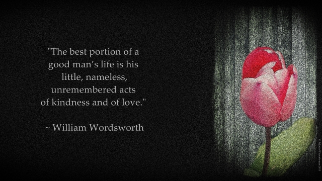 Wordsworth Wallpaper