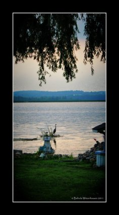 Lake Drive Picture