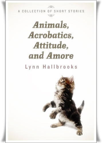 animals-acrobatics-attitude-and-amore-high-resolution473818688026812193